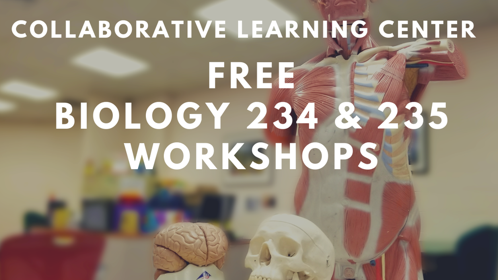 The Collaborative Learning Center is running a series of free Biology 234 and 235 workshops.