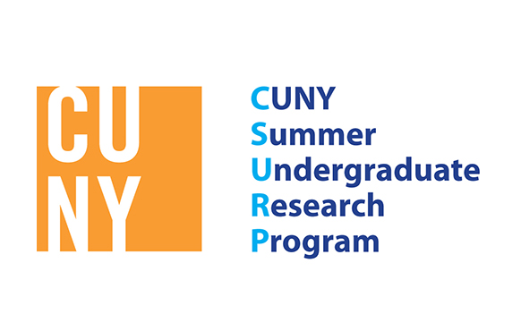 summer program application essays Open document below is a free excerpt of summer program application essay from anti essays, your source for free research papers, essays, and term paper examples.