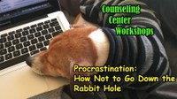 Workshop - Procrastination: How Not to Go Down the Rabbit Hole