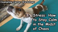 Workshop - Stress: How to Stay Calm in the Midst of Chaos