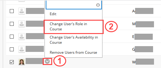 Change User's Role in Course selection