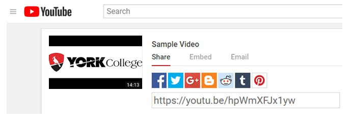 Image about clicking the share button on YouTube (Embedding Unlisted Video on YouTube in your Bb Course)