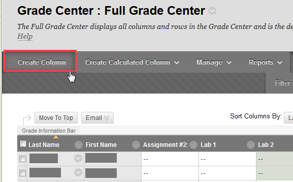 Create Column in Grade Center