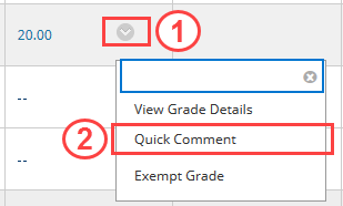 Quick Comments in grade cell