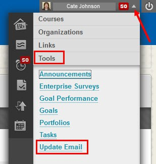 Click on Update Email in the Global Navigation Menu