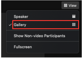 switch to gallery view in Zoom meeting