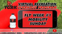 FLY Week #1 Mobility Sunday (Recreation On-Demand Workout Program)