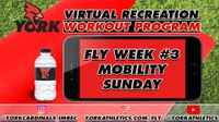 FLY Week #3 Mobility Sunday - Rec On-Demand Workout Program