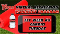 Recreation On-Demand Workout Program: Fly Week #3 Cardio Tuesday