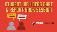 Student Wellness Chat and Report Back Session