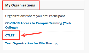 CTLET organization in Bb Homepage image