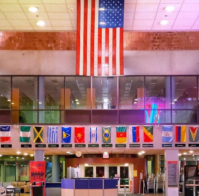York Campus Flags