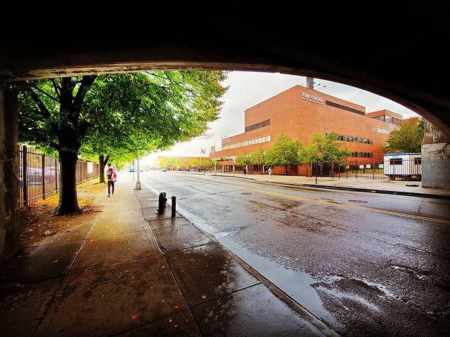 York Campus Arch