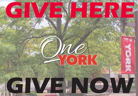 Give Here, One York, Give NOW