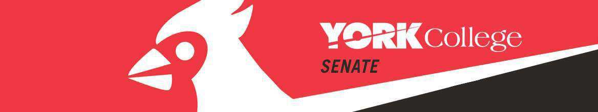 York College Senate