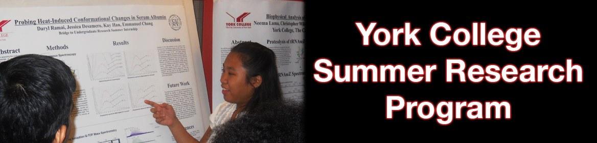 York Summer Research Program