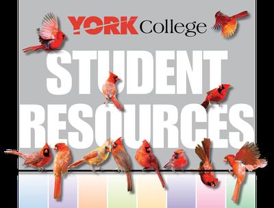 York College Student Resources