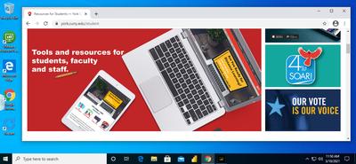 Screenshot of a MS Windows VDI