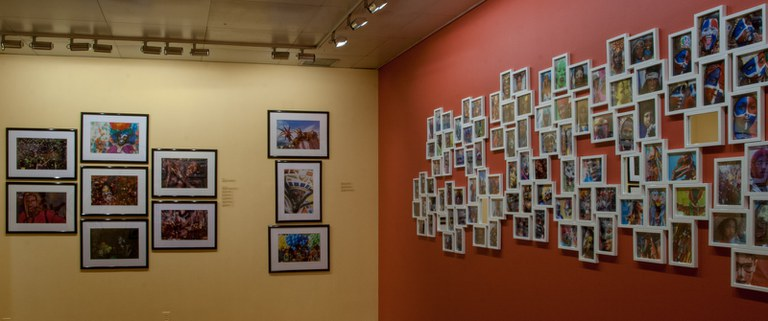 view #9 of gallery Installation looking northwest, multiple photographs