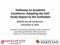Pathways to Academic Excellence Adapting the Self-Study Report to the Institution.pdf
