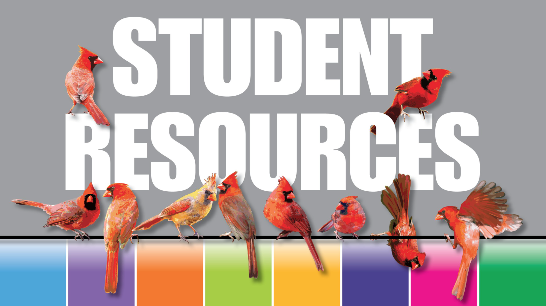 Cuny Summer Courses 2018 | Find your Dream